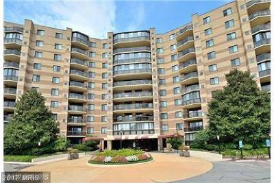McLean Condo For Sale: 8370 Greensboro Drive #817