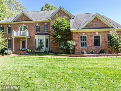 Fairfax Single Family Home For Sale: 5003 Piney Branch Road