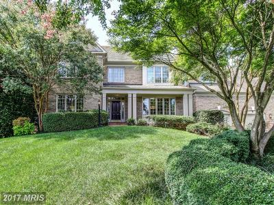 Reston Single Family Home For Sale: 1166 Fieldview Drive