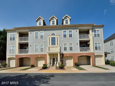 Fairfax Condo For Sale: 11322 Westbrook Mill Lane #102