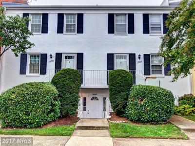 Centreville Townhouse For Sale: 14427 Turin Lane