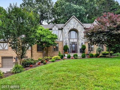 Oakton Single Family Home For Sale: 2905 Taj Drive