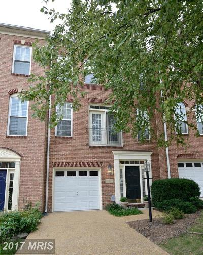 Townhouse For Sale: 13587 Flying Squirrel Drive