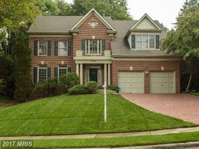 Fairfax Single Family Home For Sale: 6123 Stegen Drive