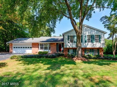 Great Falls Single Family Home For Sale: 10410 Artemel Lane