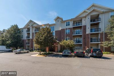 McLean Condo For Sale: 1570 Spring Gate Drive #7106