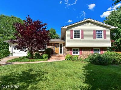 Alexandria Single Family Home For Sale: 8709 Triumph Court