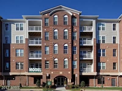 Oak Hill Condo For Sale: 13740 Endeavor Drive #303