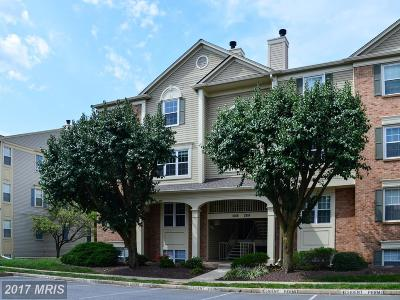 Falls Church Condo For Sale: 2814 Emma Lee Street #302