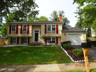 McLean Single Family Home For Sale: 1048 Douglass Drive