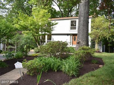 reston Single Family Home For Sale: 11572 Shadbush Court