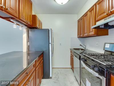 Falls Church VA Condo For Sale: $205,000