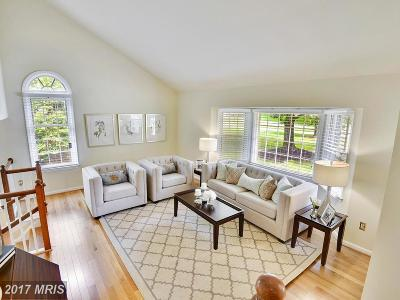 Reston Single Family Home For Sale: 1276 Golden Eagle Drive