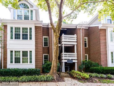 Springfield Rental For Rent: 7089 Spring Garden Drive #204