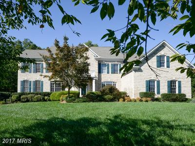 Centreville Single Family Home For Sale: 5884 Iron Stone Court