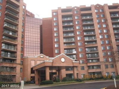 Falls Church Rental For Rent: 2230 George C Marshall Drive #404