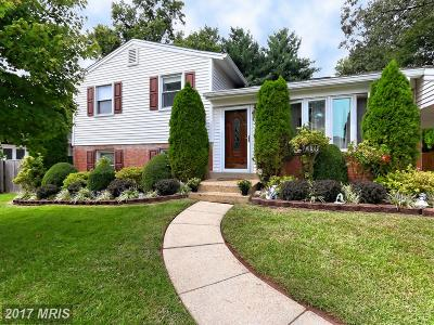 Chantilly Single Family Home For Sale: 4302 Lees Corner Road