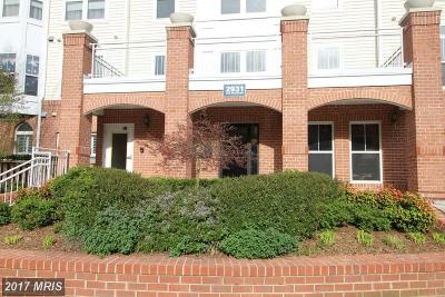 Fairfax Condo For Sale: 2931 Deer Hollow Way #208