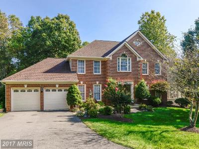 Centreville Single Family Home For Sale: 15415 Snowhill Lane
