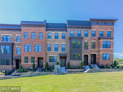 Fairfax Townhouse For Sale: 9306 Wild Black Cherry Court