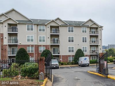 McLean Condo For Sale: 1581 Spring Gate Drive #5312