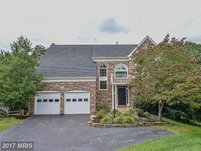 Chantilly Single Family Home For Sale: 4900 Fox Creek Court