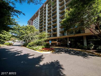 Falls Church Condo For Sale: 3800 Powell Lane #814
