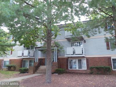 Falls Church Condo For Sale: 3701 George Mason Drive #218N