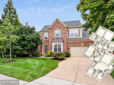 Herndon Single Family Home For Sale: 2496 Sycamore Lakes Cove