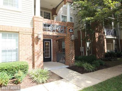 Falls Church Rental For Rent: 3003 Nicosh Circle #3110
