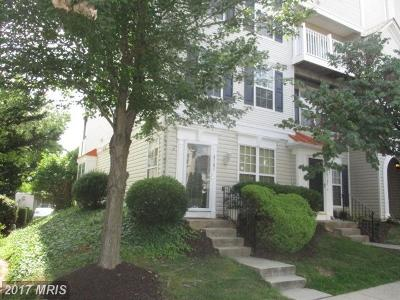 Lorton Condo For Sale: 8181 Halley Court