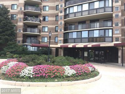 McLean Rental For Rent: 8340 Greensboro Drive #211