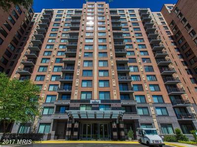 Alexandria Rental For Rent: 2451 Midtown Avenue #219