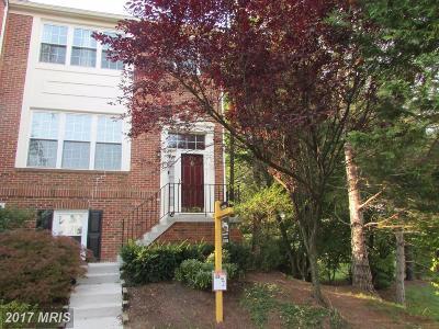 Fairfax Rental For Rent: 13127 Sparrow Tail Lane