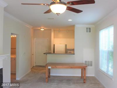 Fairfax Rental For Rent: 11305 Aristotle Drive #2-205