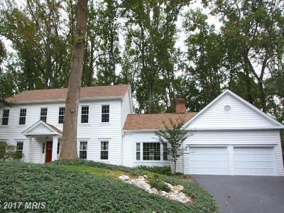 Vienna Single Family Home For Sale: 9613 Cinnamon Creek Drive