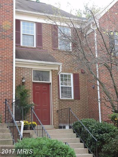 Falls Church Rental For Rent: 7766 Marshall Heights Court