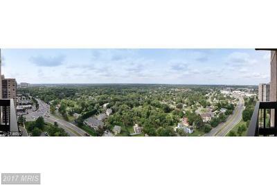 Falls Church Rental For Rent: 5505 Seminary Road #1915N