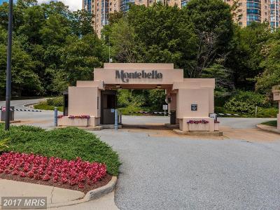 Alexandria Condo For Sale: 5904 Mount Eagle Drive #1103