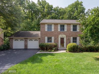 Fairfax Single Family Home For Sale: 3343 Happy Heart Lane