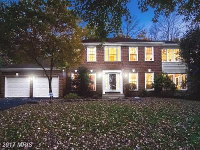 Centreville Single Family Home For Sale: 6184 Snowhill Court