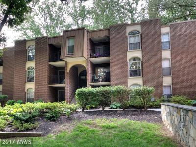 Annandale Condo For Sale: 3352 Woodburn Road #13