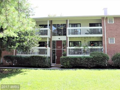 Annandale Condo For Sale: 7467 Little River Turnpike #201