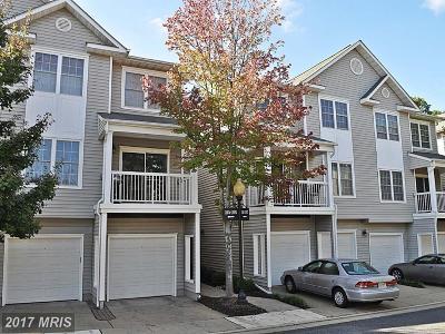 Fairfax Rental For Rent: 12805 Fair Briar Lane