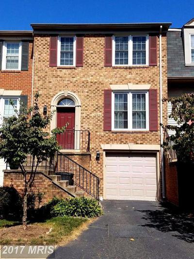 Fairfax Rental For Rent: 4204 Sleepy Lake Drive