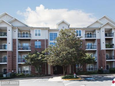 McLean Condo For Sale: 1570 Spring Gate Drive #7204
