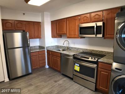 Falls Church Condo For Sale: 3713 George Mason Drive #1309