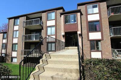 Fairfax Condo For Sale: 9704 Kingsbridge Drive #303
