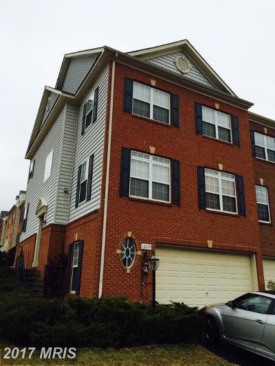 Fairfax Rental For Rent: 12659 Heron Ridge Drive