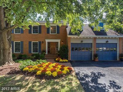 McLean Single Family Home For Sale: 8005 Snowpine Way